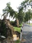 Auswirkung Tornado 2008 in Bötersen