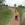 Naturkundliche Wanderung